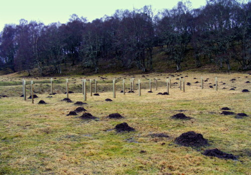 Delliefure_Natural_Burial_Ground